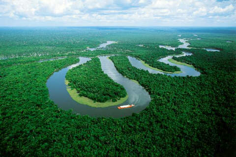 One-fifth of the world's fresh water is found in the Amazon Basin.