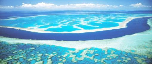 Great Barrier Reef, photo credit to new7wonders.com